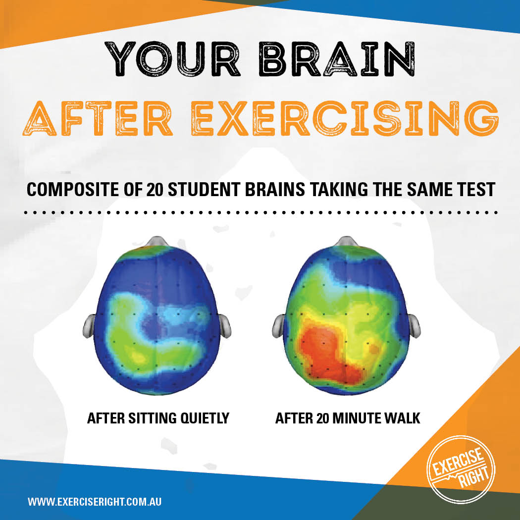 Your brain after exercising
